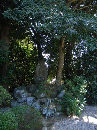 akishinodera (2).jpg