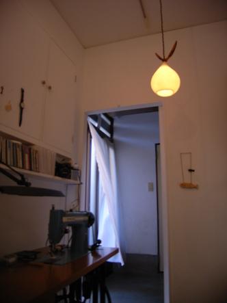 bonsai (5).jpg